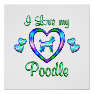 Love My Poodle Posters