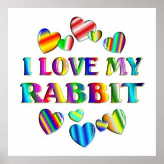 Love My Rabbit Poster