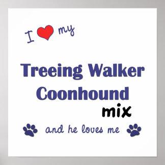 Love My Treeing Walker Coonhound Mix (He) Poster