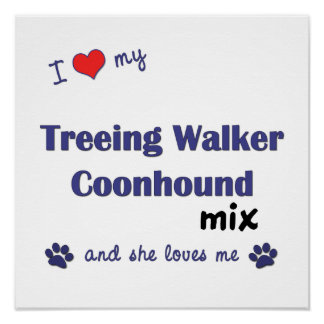 Love My Treeing Walker Coonhound Mix (She) Poster