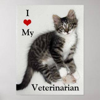 Love My Veterarian Zorro Kitty Poster