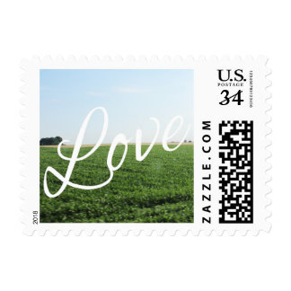 Love Nature Photography Meadow Script Type Postage Stamp