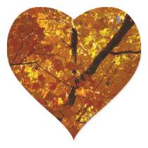Love Nature Stickers - Fall Foliage