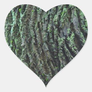 Love Nature Stickers - Tree Moss