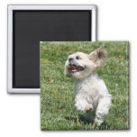 Love of life 2 inch square magnet
