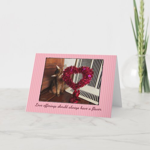 Love Offerings Somali Cat Card