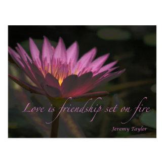 love on fire postcard