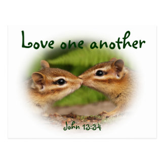 Love One Another Baby Chipmunks Postcard