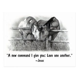 Love One Another: Jesus: Horses Postcard