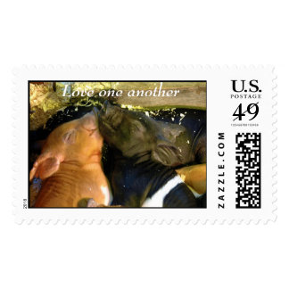 Love one another postage stamp