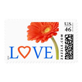 Love Orange Gerberas Daisy Gerber Daisy Stamp