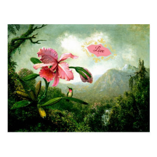 Love, Orchid and Hummingbird near a Waterfall Postcard