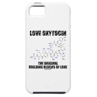 Love Oxytocin The Original Building Blocks Of Love iPhone SE/5/5s Case