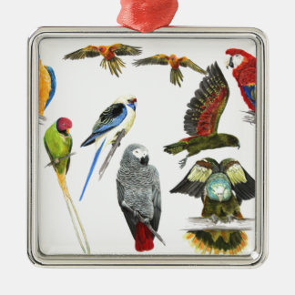 love parrots love these the 2nd in the series metal ornament