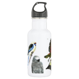 love parrots love these the 2nd in the series 18oz water bottle