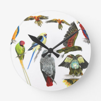love parrots love these the 2nd in the series round clock