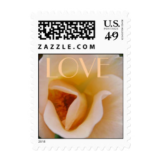 LOVE Peach Rose Postage Stamp