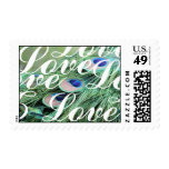 Love Peacock Stamps