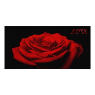Love petals - Red rose Card