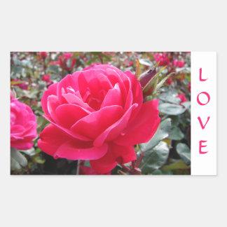 Love Pink Romance  Rose  Stickers
