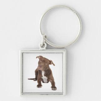 Love Pitbull Puppy Dog Keychain