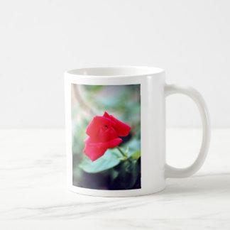 Love Poem and Red Rose Bud Coffee Mug