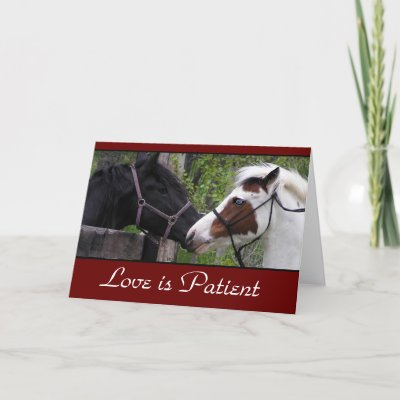 love poems cards. Love Poem Cards by WesternWeddings. Photo of blue eyed horses with the