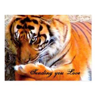 Love_Postcard Postcard