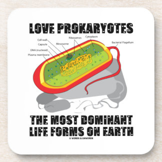 Love Prokaryotes Most Dominant Life Forms On Earth Beverage Coaster