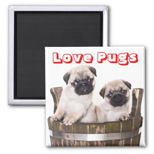 Love pugs puppy dogs in wooden barrel crate magnet zazzle for Crate and barrel dog