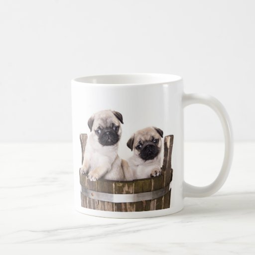 Love pugs puppy dogs in wooden crate barrel coffee mugs for Crate and barrel dog