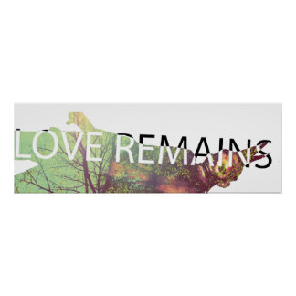 Love remains poster