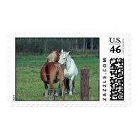 Love, romance: 2 Belgian heavy horses photo Postage Stamps
