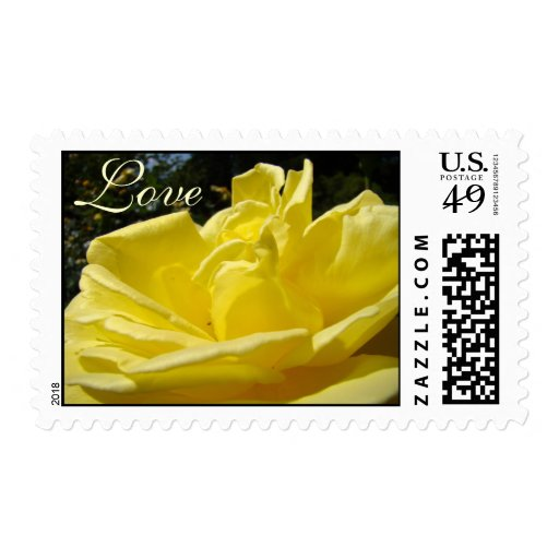 Love Rose Postage Stamps Yellow Roses Floral