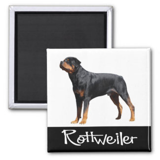 Love Rottweiler Black And Brown Puppy Dog Magnet