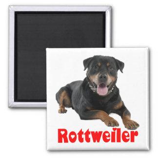 Love Rottweiler Brown & Black Puppy Dog Cartoon Magnet