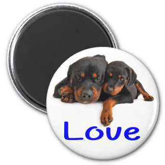 Love Rottweiler Brown & Black Puppy Dog Magnet