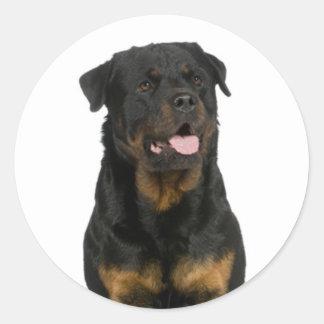 Love Rottweiler Puppy Dog Sticker / Seal