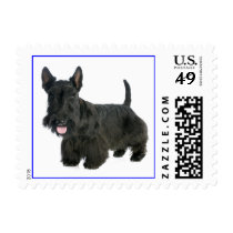 Love Scottish Terrier Puppy Dog Postage Stamp