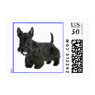 Love Scottish Terrier Puppy Dog Postage Stamp