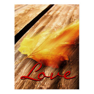 Love Script Falling Leave Postcard