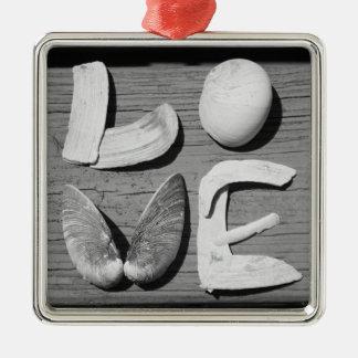 LOVE Sea Shell Black and White Ornament