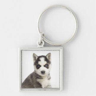Love Siberian Husky Puppy Dog Keychain
