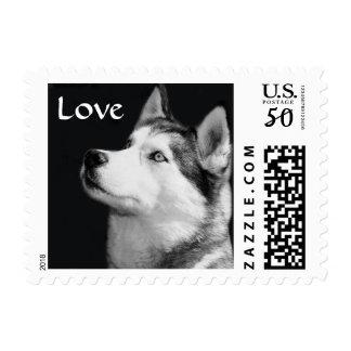 Love Siberian Husky Puppy Dog Postage Stamp