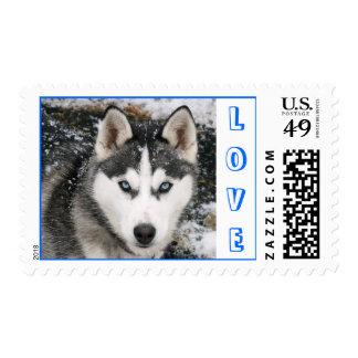 Love Siberian Husky Puppy Dog Snow Postage Stamp