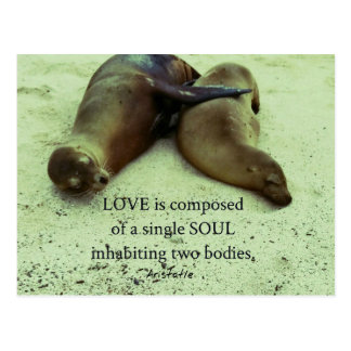Love soulmates Aristotle quote Postcard