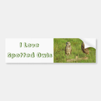 Love Spotted Owls Bumper Sticker