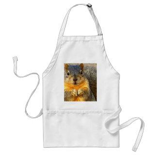 Love Squirrel_ Aprons