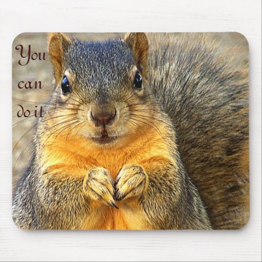 Love Squirrel_ Mouse Pads