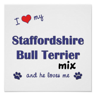 Love Staffordshire Bull Terrier Mix (He) Poster